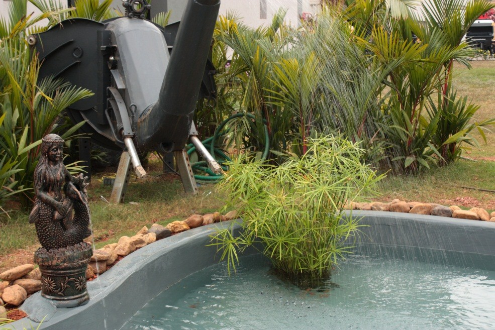 Fish Ponds Landscaping Gardens Amp Plant Hire Service